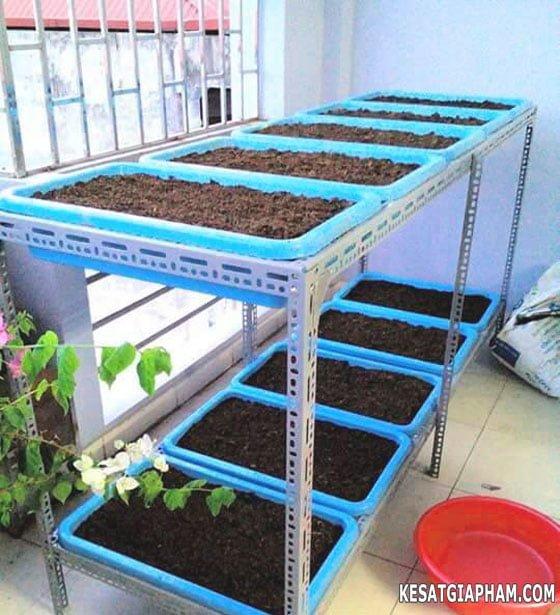 Kệ trồng rau làm bằng sắt v lỗ